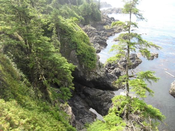 Vancouver Trip 2017 501